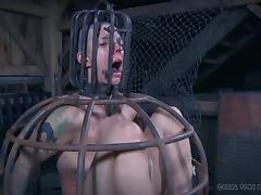 Hottie without hair is now just a prisoner in the BDSM dungeon