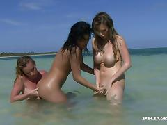 Three hot girls in bikinis have lesbian sex on a beach