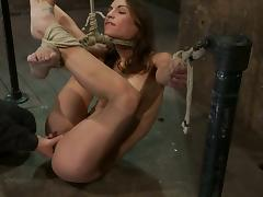 Hog tied Amber Rayne gets toyed with a dildo and a vibrator